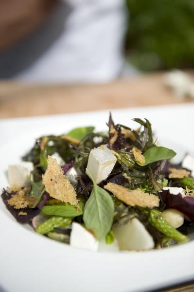 Zomerse salade van notenkruid en citroenbasilicum met zwitte asperges, geitenkaas en sesamdressing