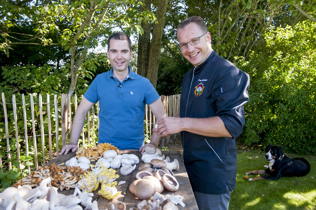 De Westfriese Tafel - Koolen PaddestoelenPasta met bundelzwammen en rauwe champignons